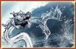 dragon,cochon,lyon 7eme