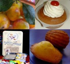 lac de gegardmer,lorraine,nancy,verdun,mirabelle,macarons de nancy