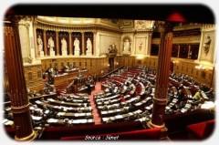 Senat2 senat.jpg
